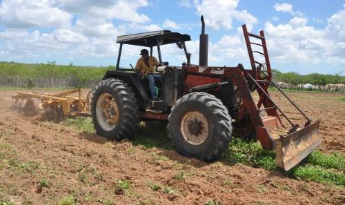 Cerca de 450 hectares de terras cortadas no município de Macau